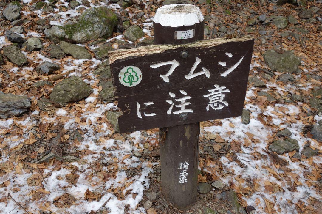 170114棒ノ折山_061