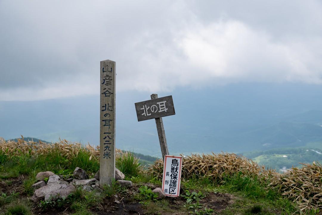 190622霧ヶ峰_051