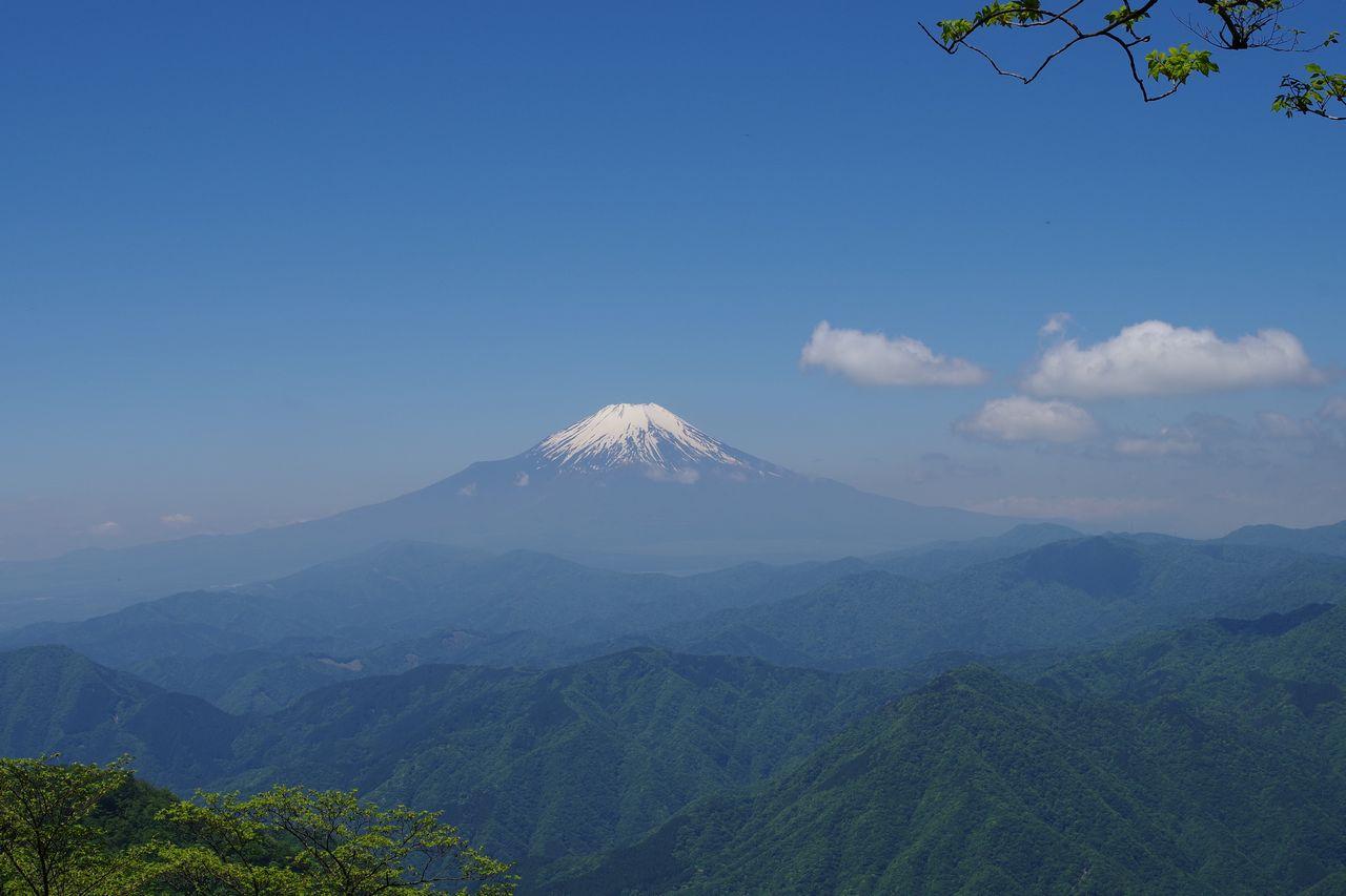 檜洞丸 つつじ新道から見た富士山