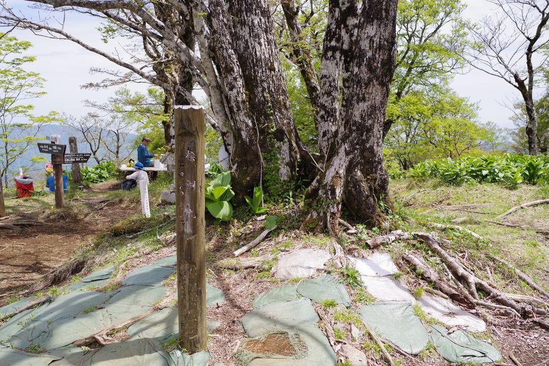 檜洞丸の山頂標識