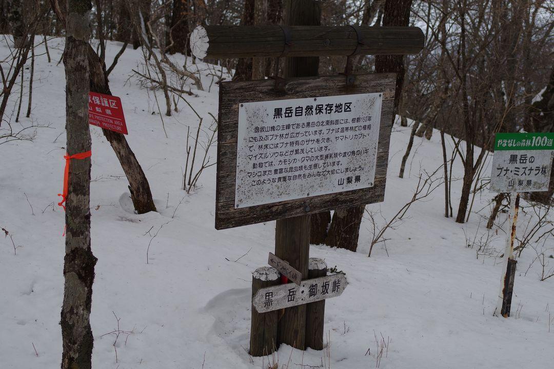 170325釈迦ヶ岳_067
