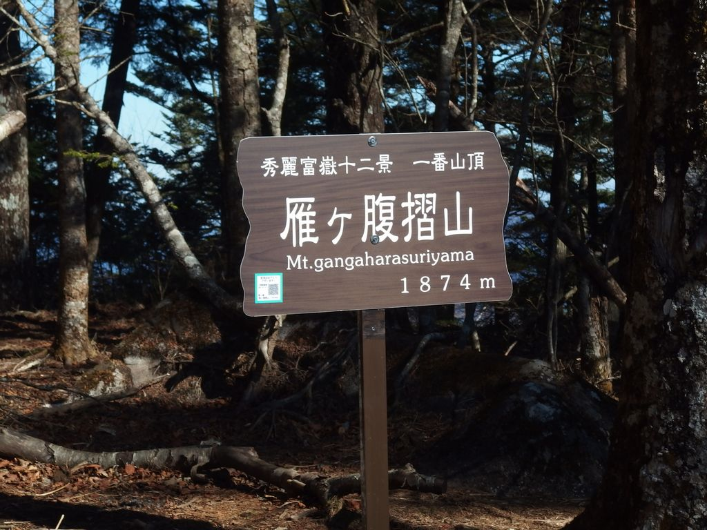 151128雁ヶ腹擦山_029