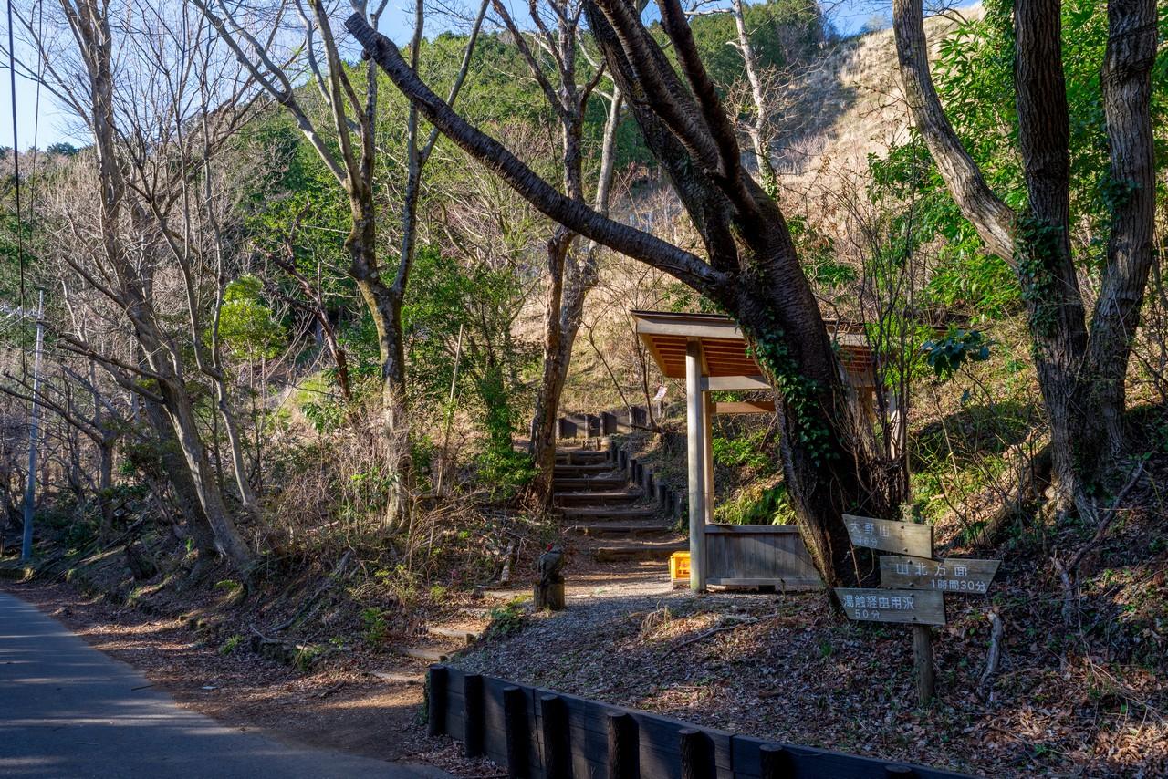200320大野山_0044