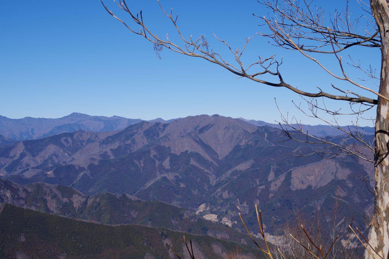 権現山から見た三頭山