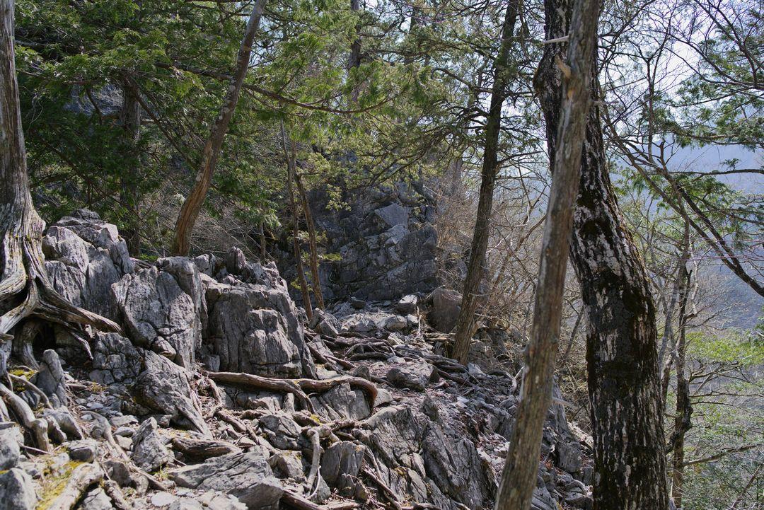 稲村岩への道