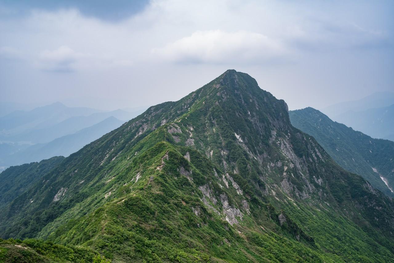 七ツ小屋山付近から見た大源太山