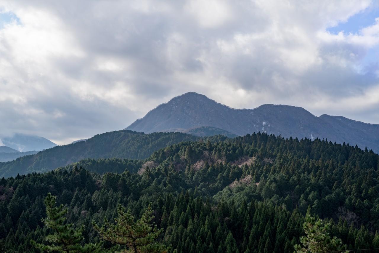 足柄峠から見た金時山