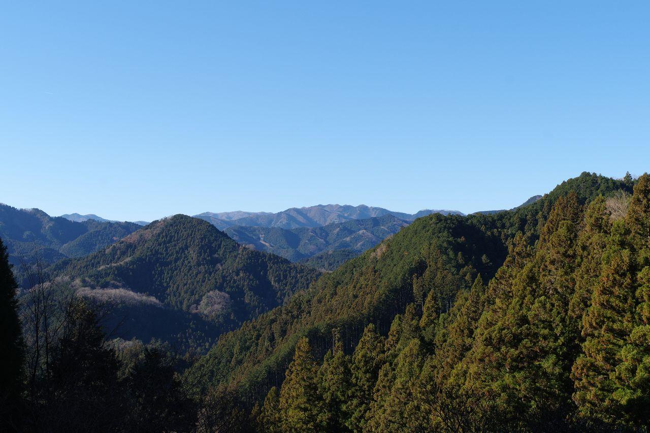 高山不動へ続くパノラマコースの風景