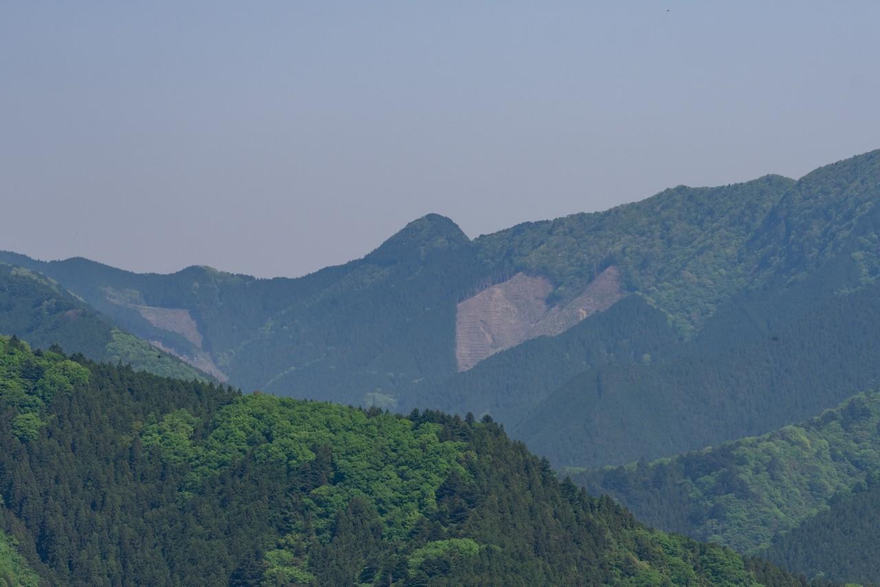 190512浅間嶺_054