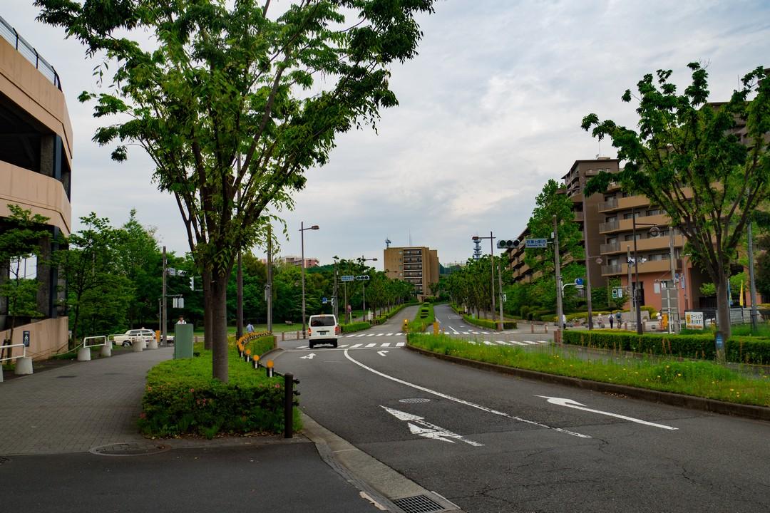 若葉台付近の道路