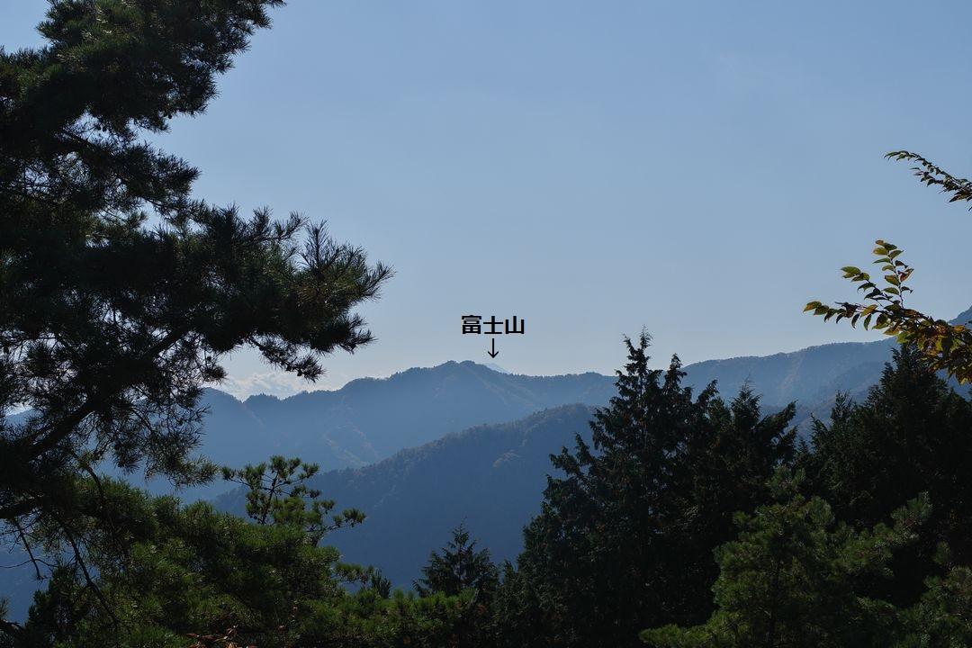 日の出山から見た富士山