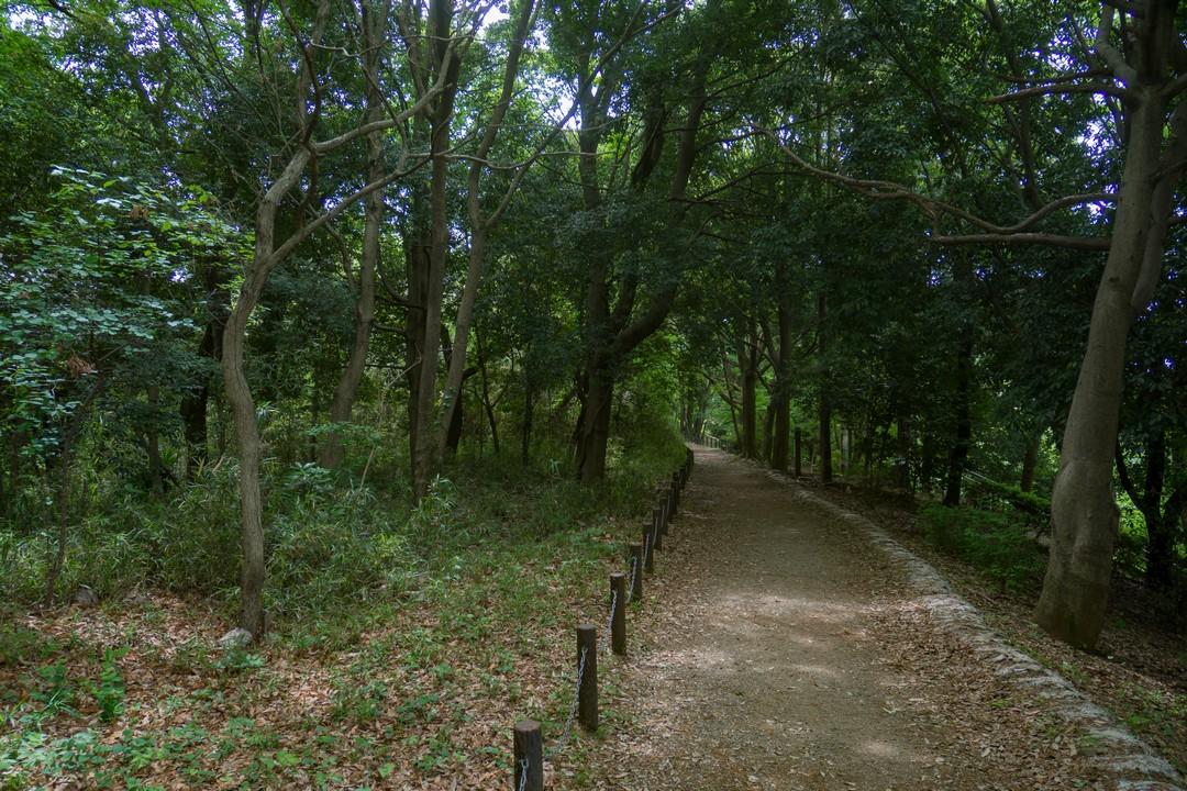 多摩よこやまの道の沿道風景