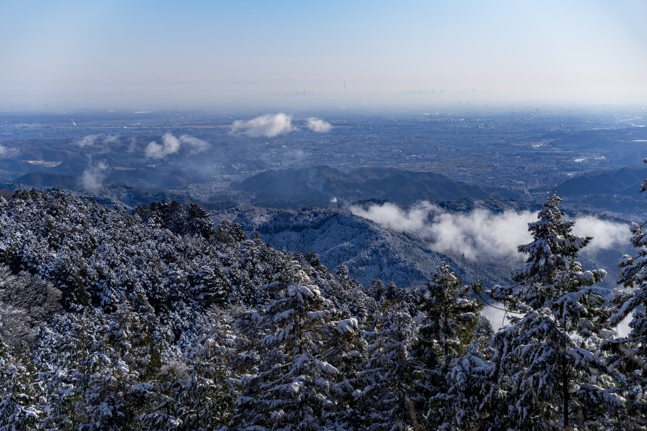 200119大岳山_044