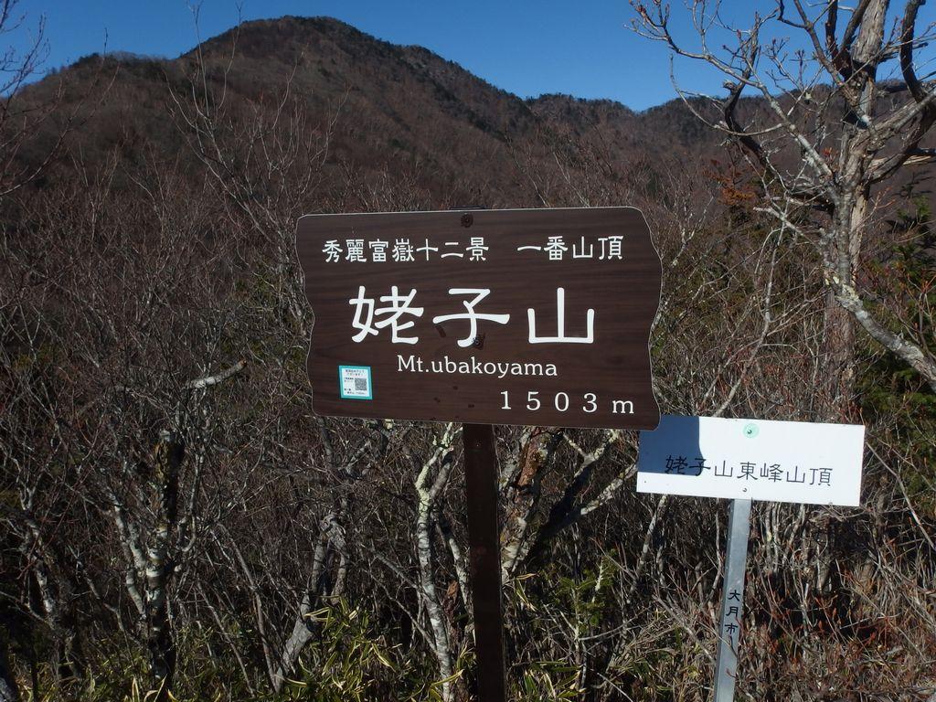 151128雁ヶ腹擦山_018