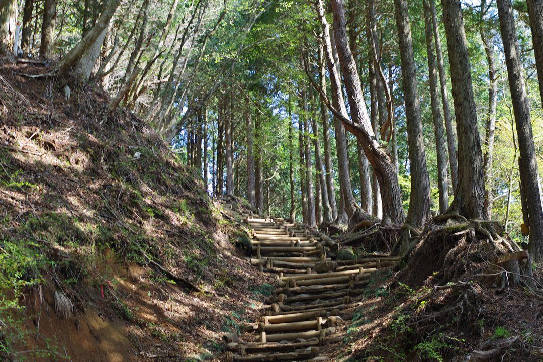 大倉尾根の急階段
