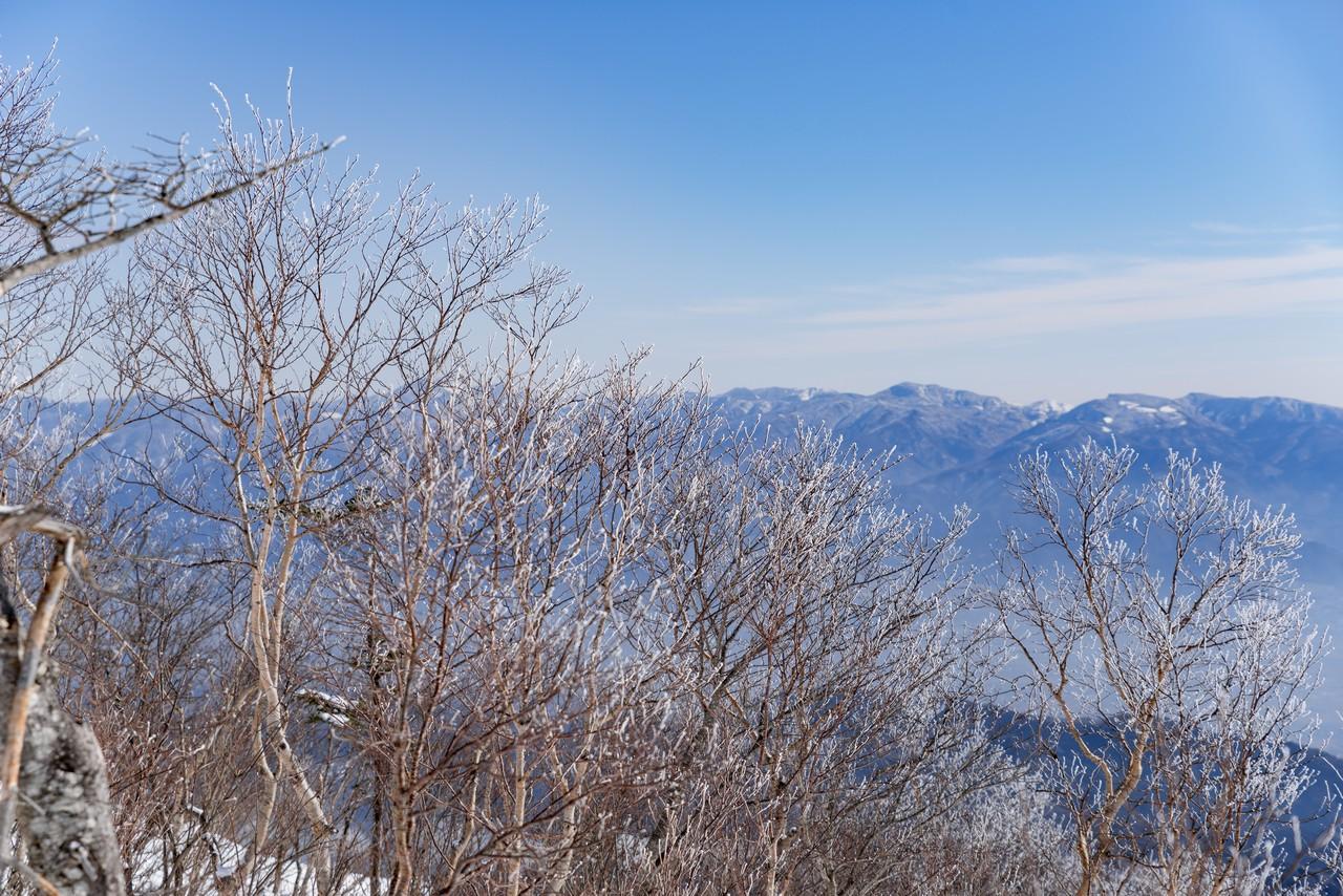 200111飯縄山_052