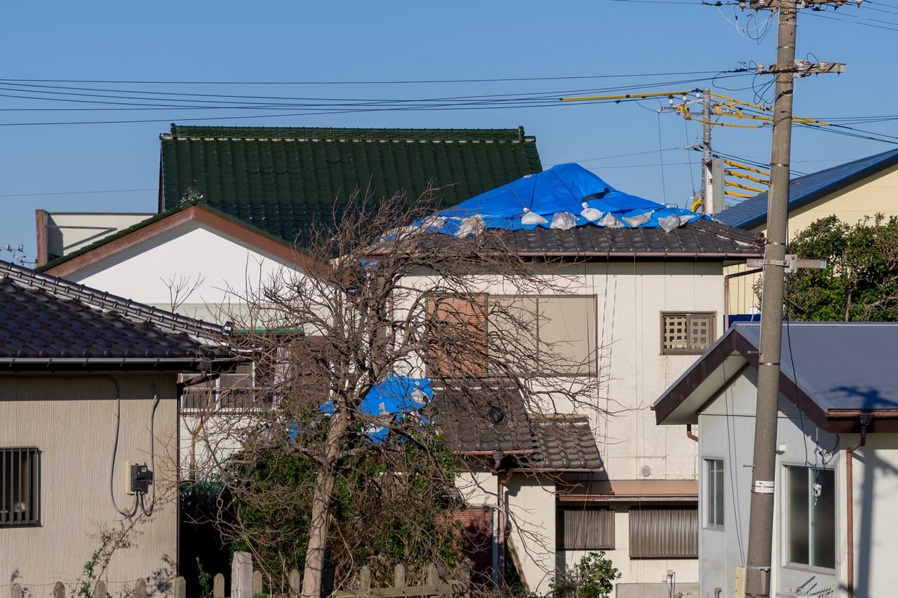 200209伊予ヶ岳_030