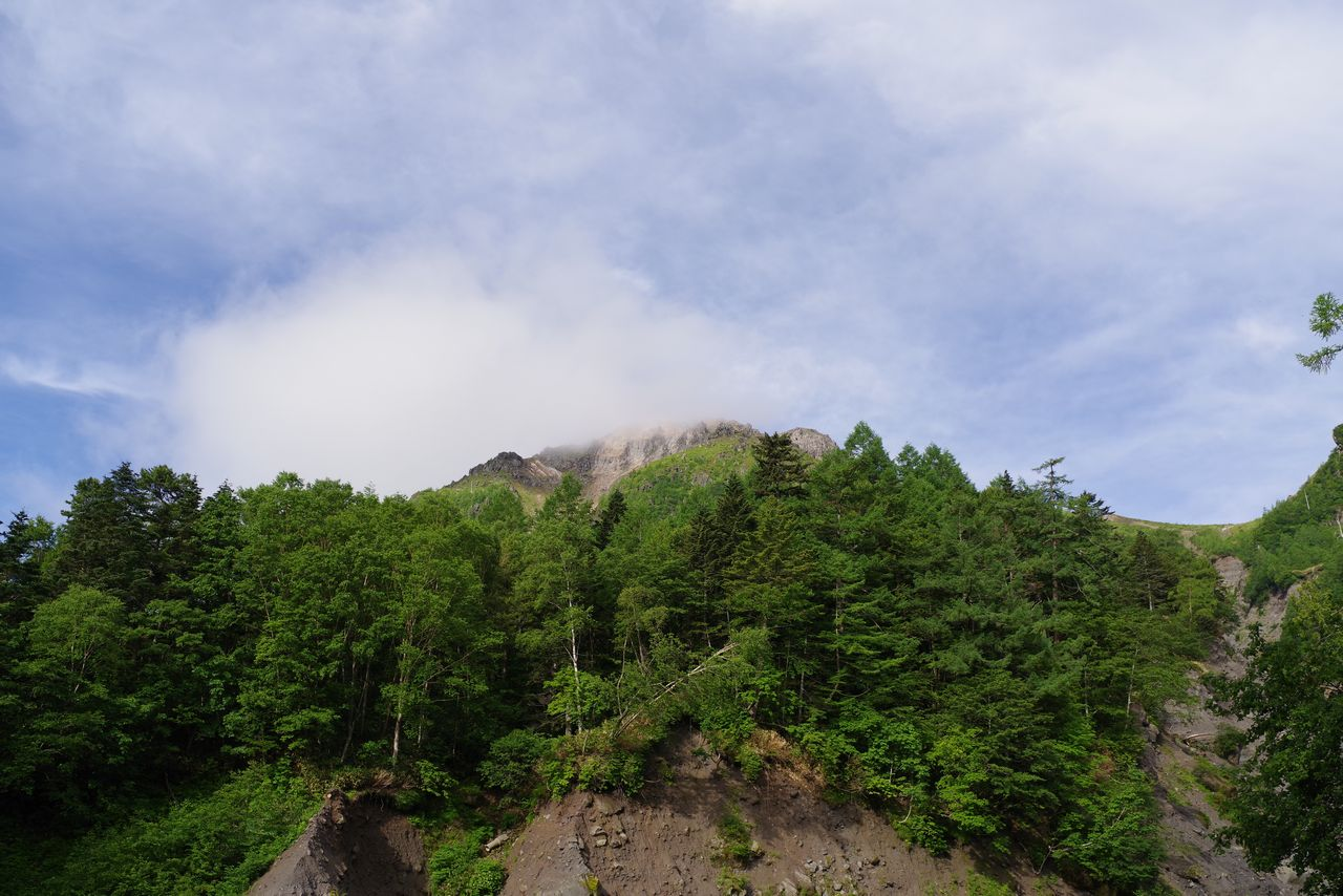 ガスに覆われた焼岳山頂