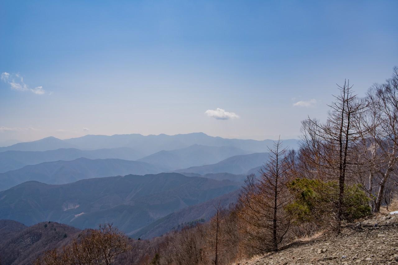 鷹ノ巣山から見た大菩薩嶺
