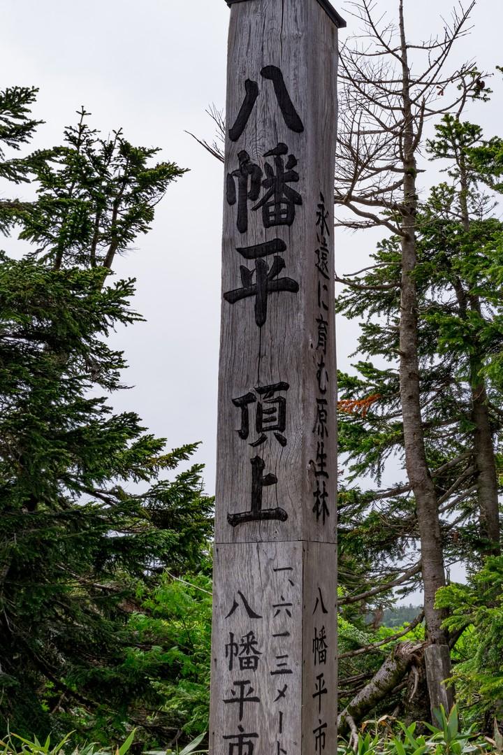 190706八幡平_068