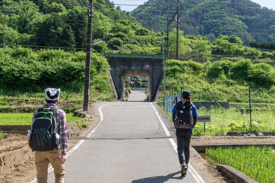 170603滝子山_008