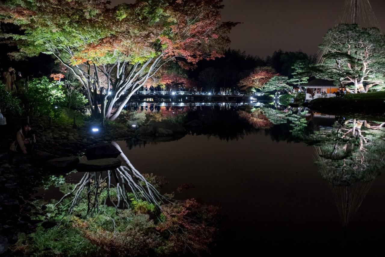 191124昭和記念公園_037