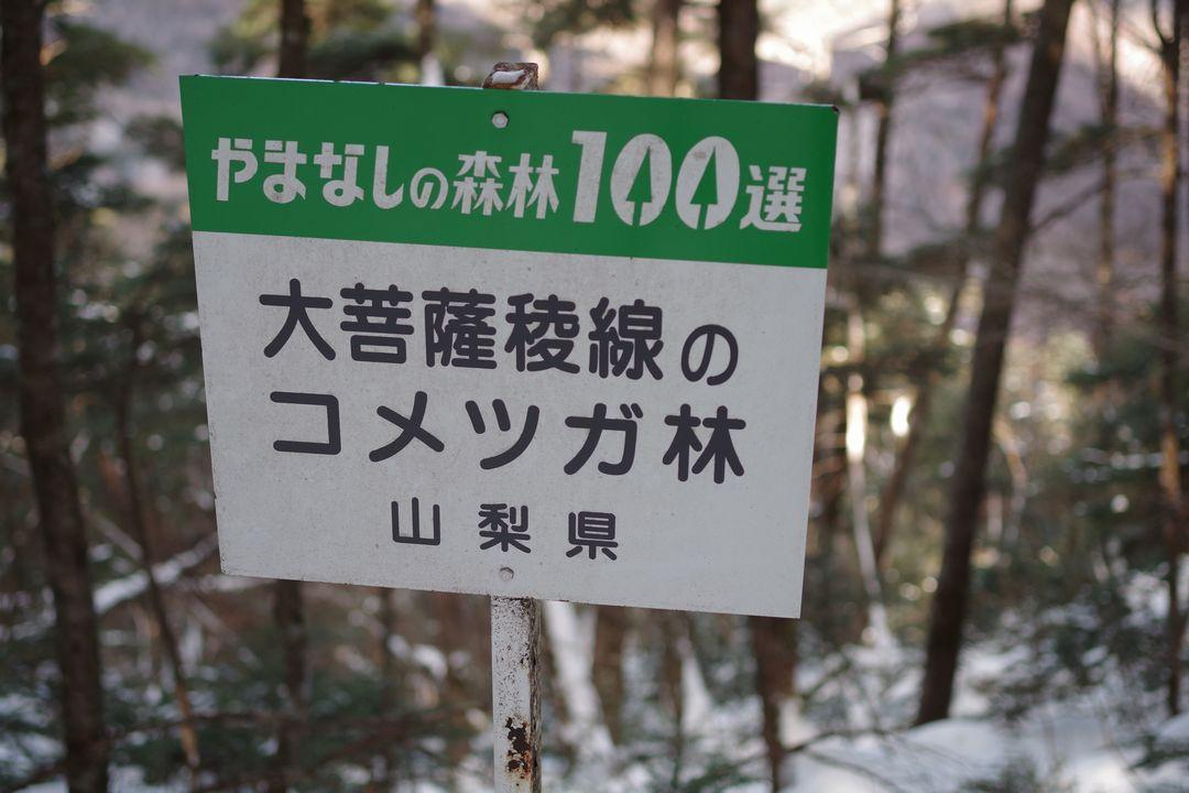 170212大菩薩嶺_026