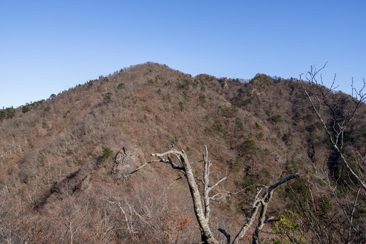 191208王岳_056