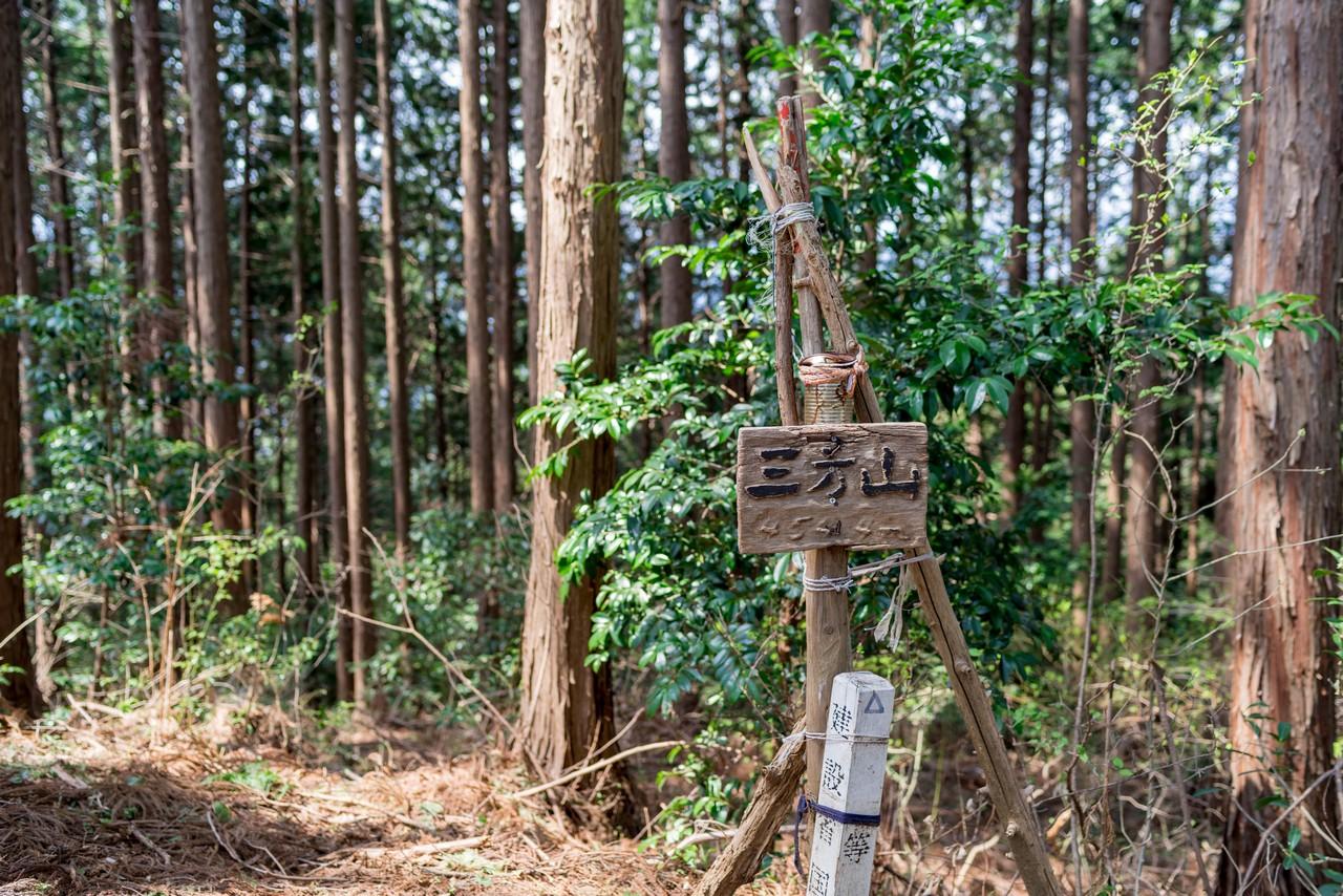 190407青梅丘陵_049