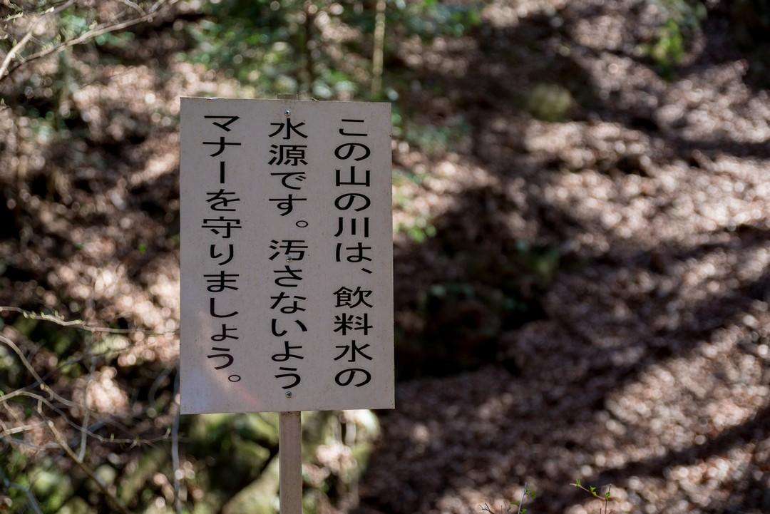 190324倉岳山_029