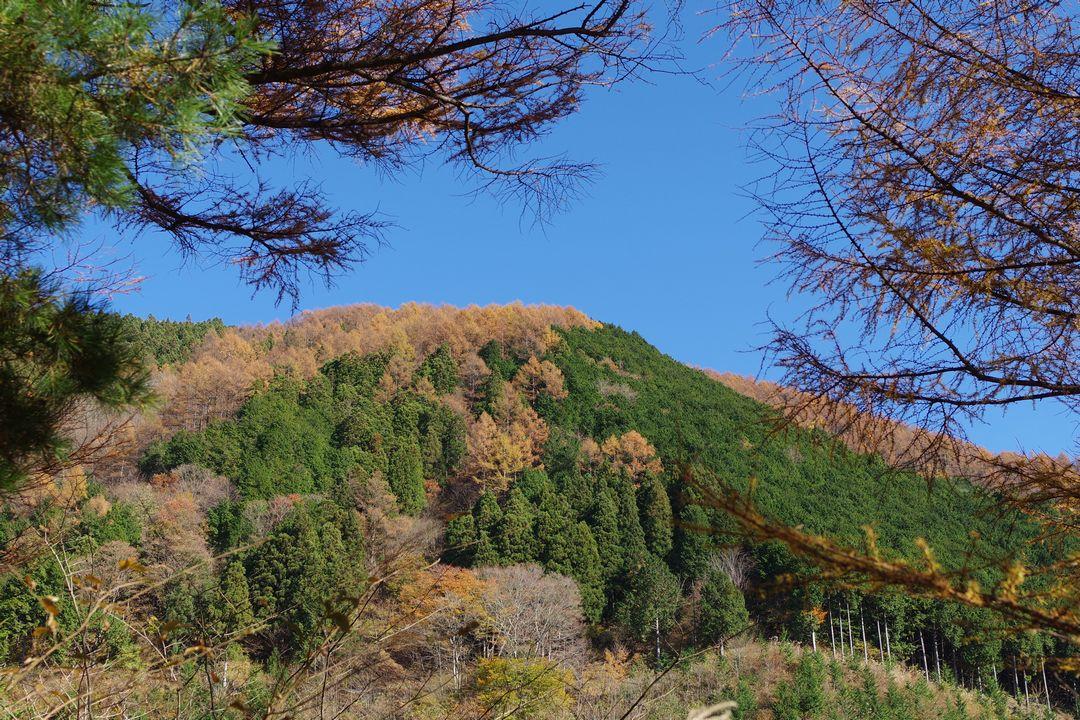 武甲山の南側斜面
