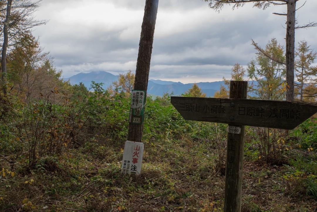 土俵山の山頂