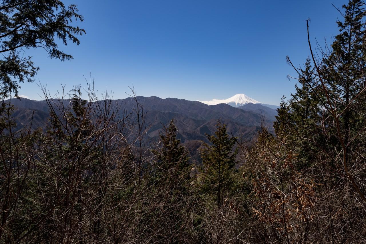 190324倉岳山_004