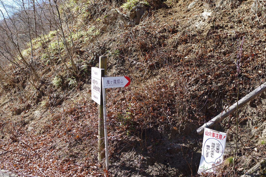 171125雁ヶ腹擦山_062