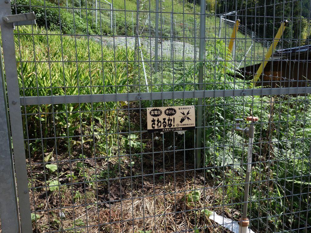 160910飛竜山_009