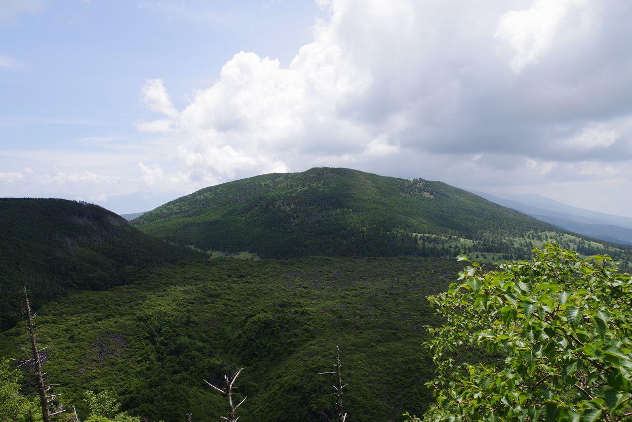 北横岳から見た縞枯山