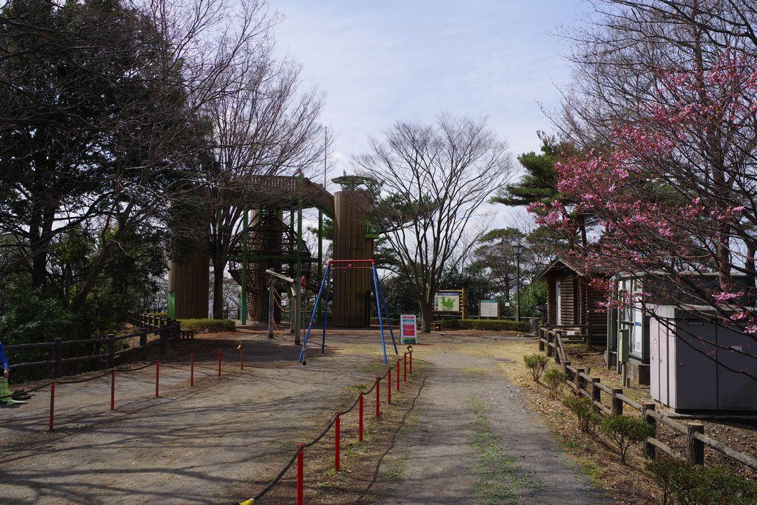 180324三毳山_081