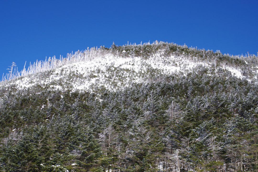 八丁平から見た縞枯山