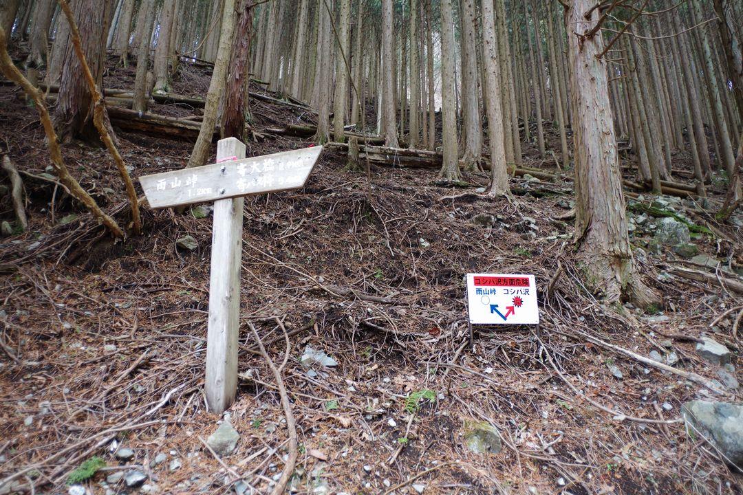 雨山峠コース コシバ沢分岐