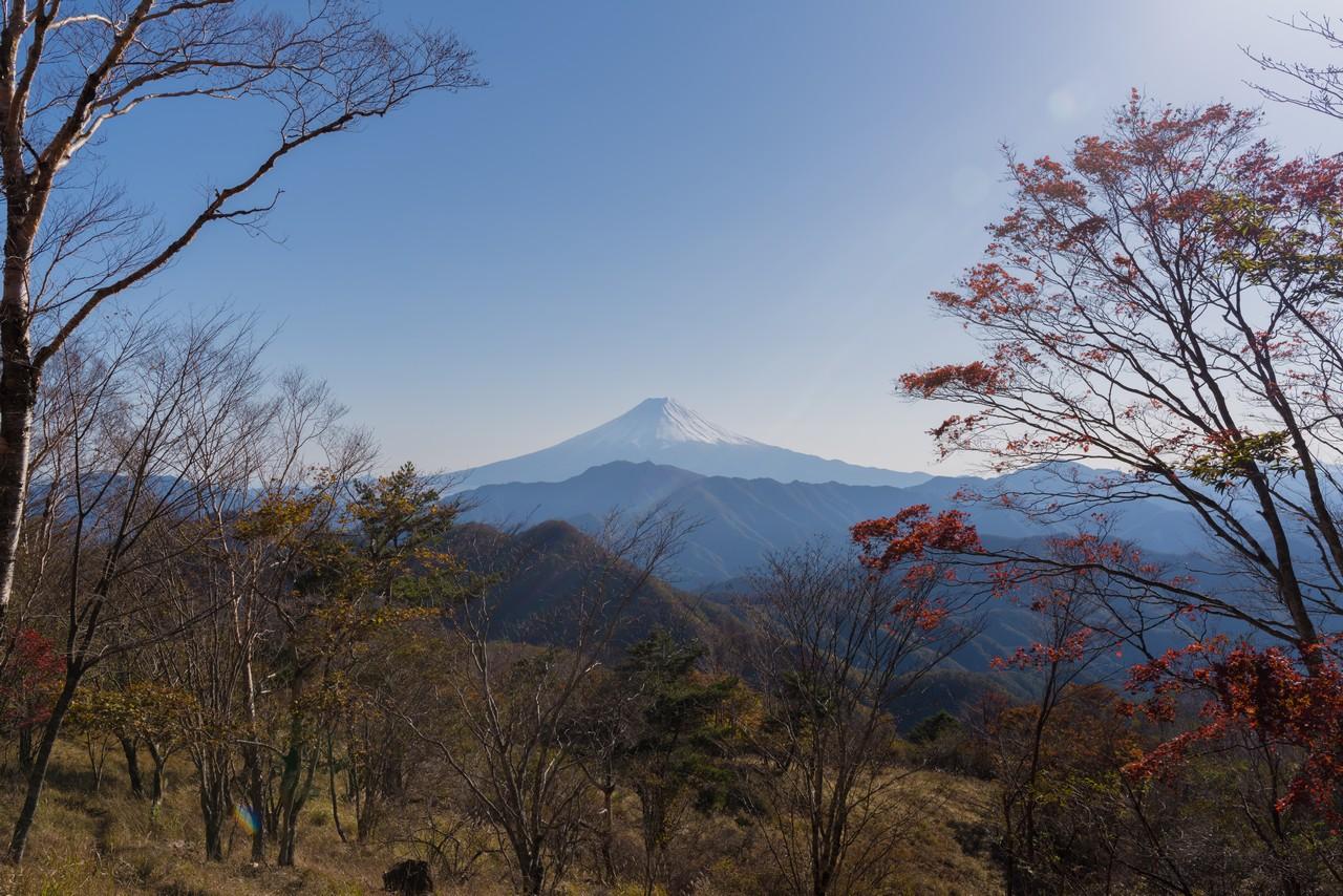 ハマイバ丸から見た富士展望