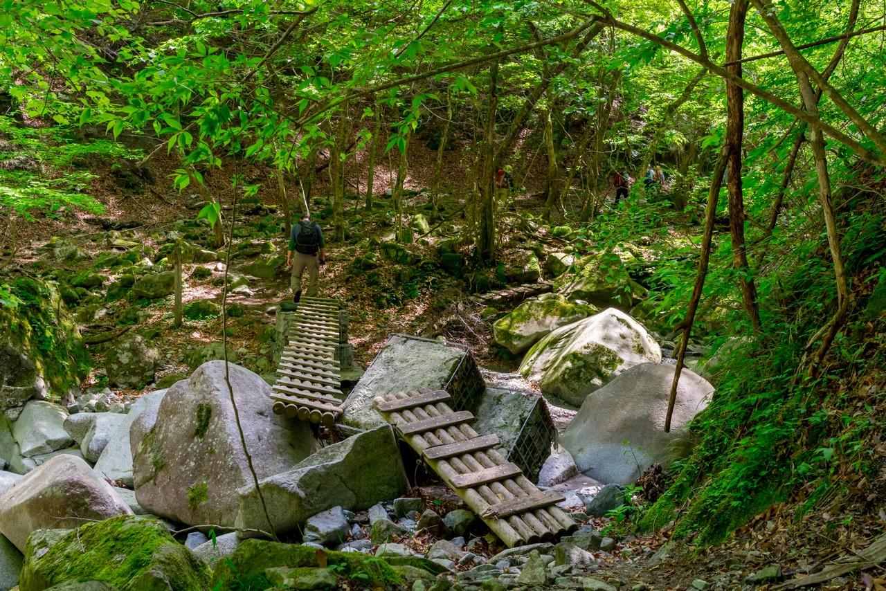 用木沢沿いの荒れ気味の登山道