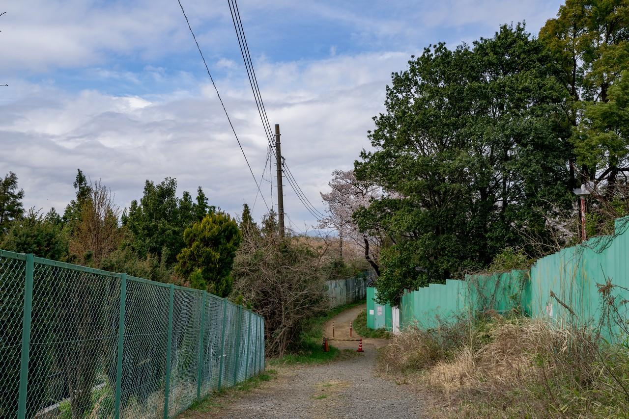 200328七生丘陵_084