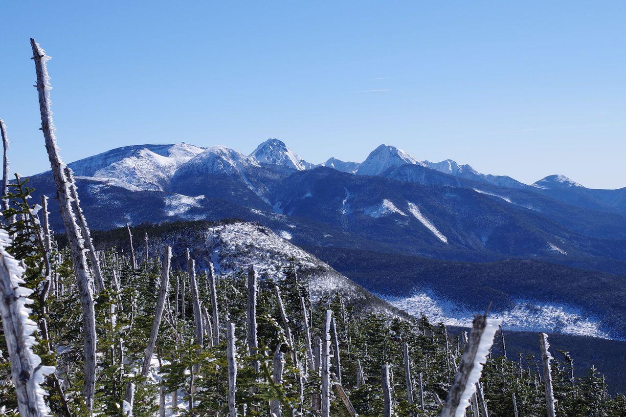 縞枯山から見た南八ヶ岳
