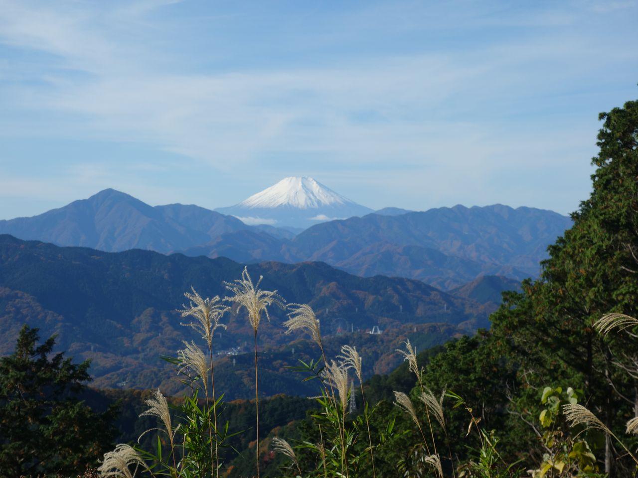 もみじ台から見た富士山