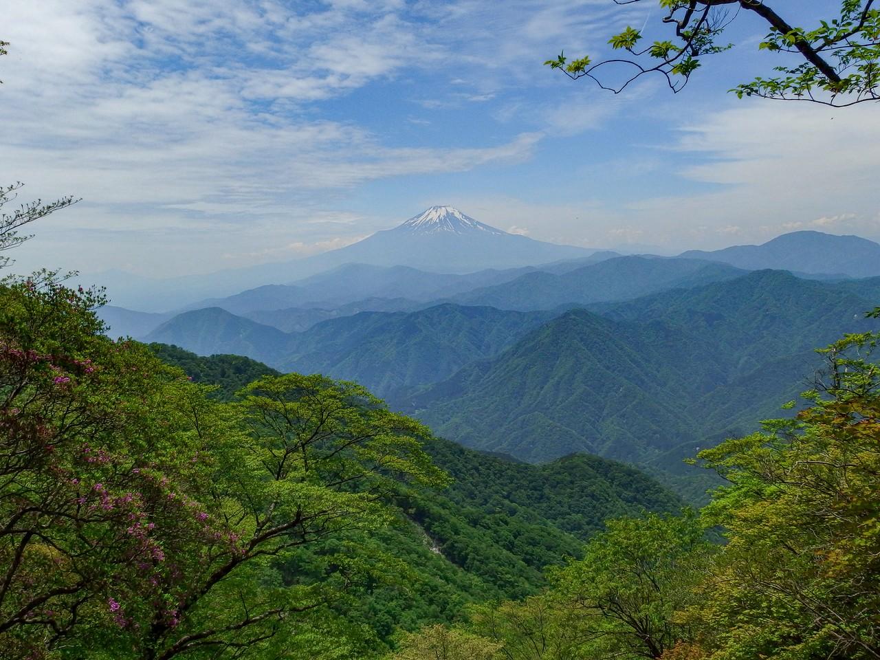 檜洞丸からの富士展望