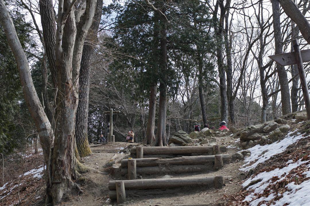 宝登山 山頂手前の光景