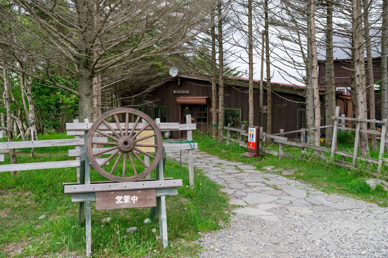 190622霧ヶ峰_096