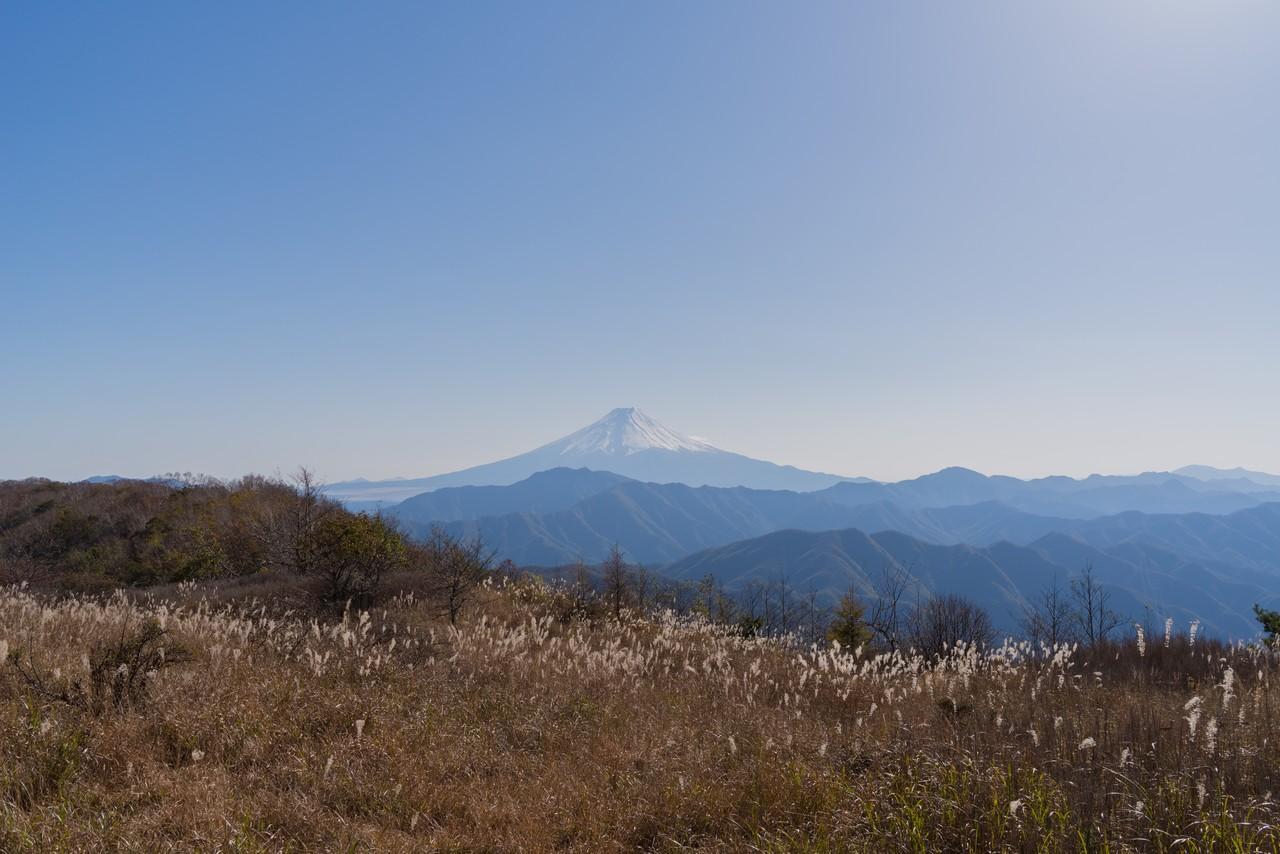 大蔵高丸からの富士展望