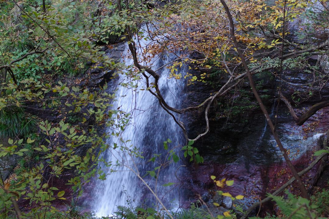 武甲山 浦山口登山道の滝