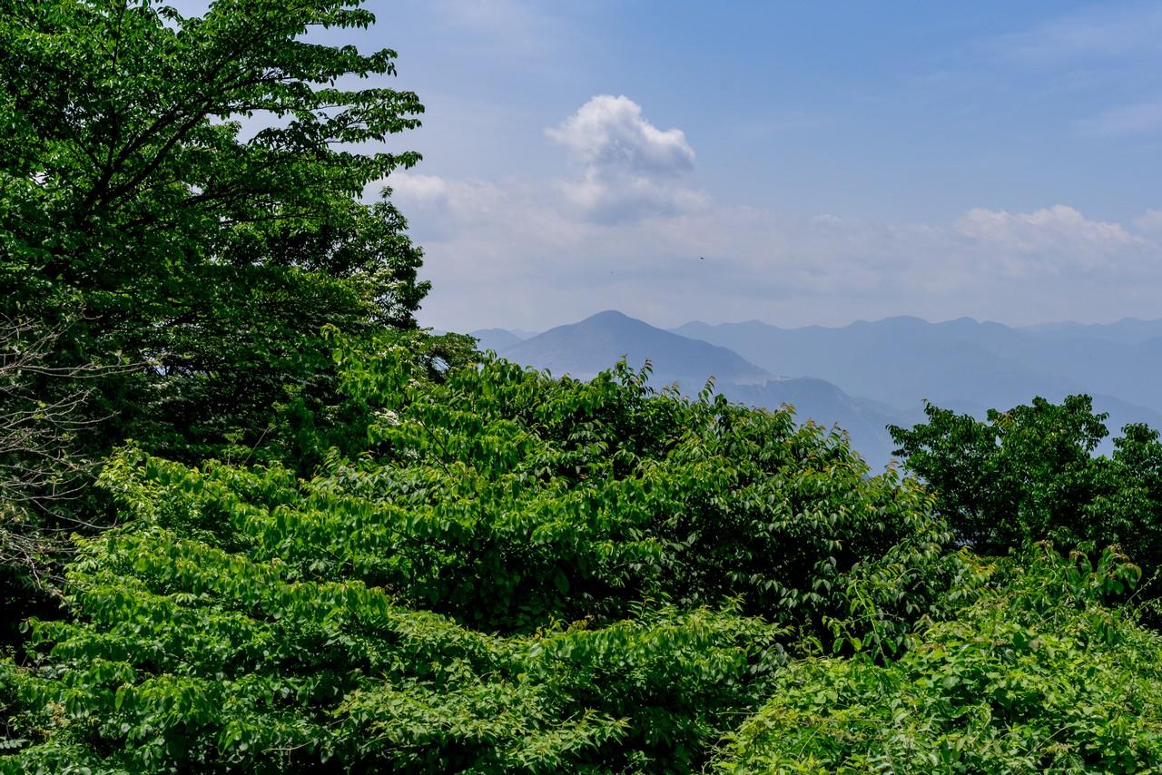 大霧山から見た武甲山
